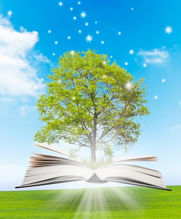 l'intuition dans un livre